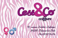 Cess co logo